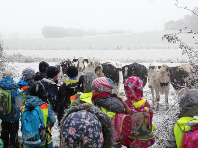 Kinder wandern im Schnee